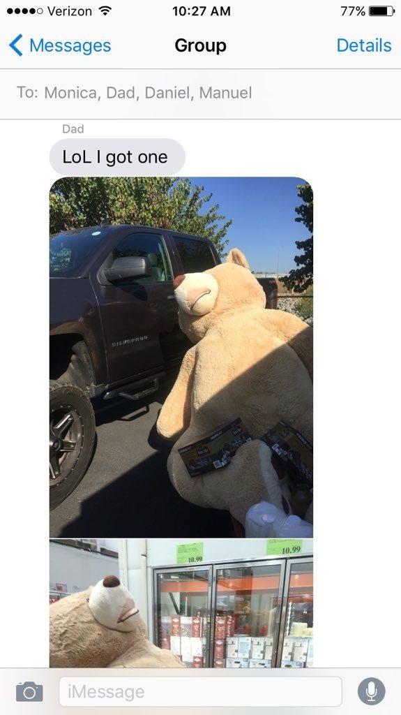 דוב צעצוע