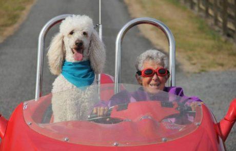 אישה בת 91 הלכה לעולמה לאחר שוויתרה על הכימו ויצאה למסע מחוף לחוף בנוסח תלמה ולואיז