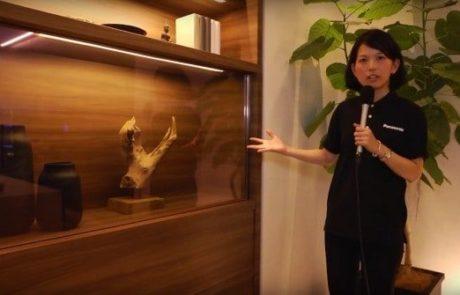 פנסוניק חשפה דגם חדש של טלוויזיה בלתי נראית