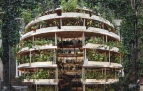 מעבדות איקאה הפיצו חינם תוכנית לגינת ירק שיכולה להאכיל שכונה שלמה