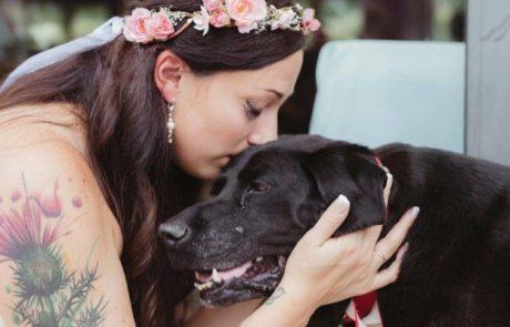 הכלב בן ה-15 הספיק לחיות כדי לראות את בעליו מתחתנת