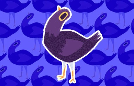 מאיפה צצה הציפור הסגולה שנראית בכל מקום?